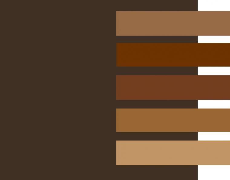 Коричневый цвет волос: фото, светло, темно, пепельный, холодный, без рыжины, краска