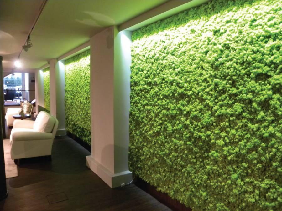 Стабилизированный мох – как крепить и ухаживать, интересные изделия, варианты использования в интерьере