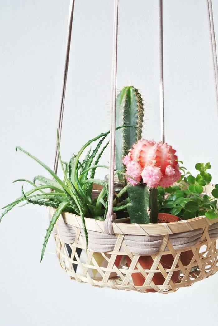 Горшки своими руками: как сделать цветочный горшок и лучшие идеи декора. 130 фото и советы начинающим