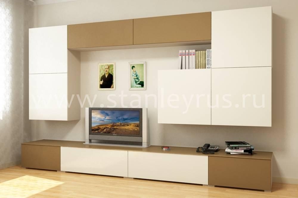 Стеллаж в гостиную: 100 фото новинок дизайна мебели из каталога производителя