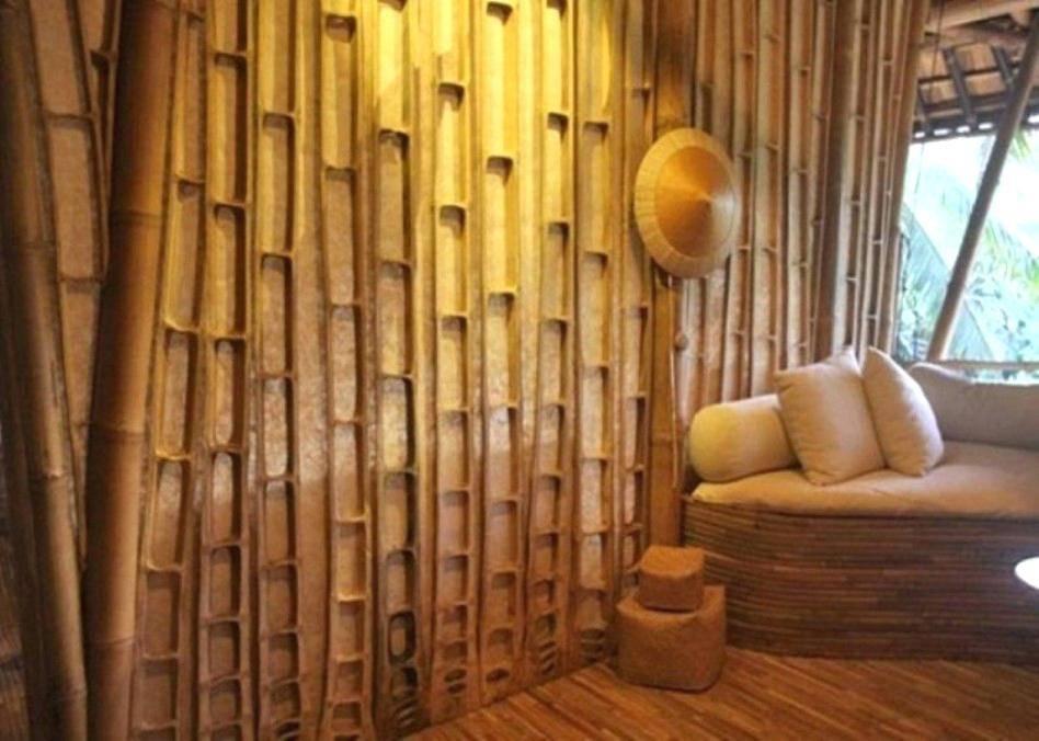 Декоративный бамбук: секреты ухода и выращивания