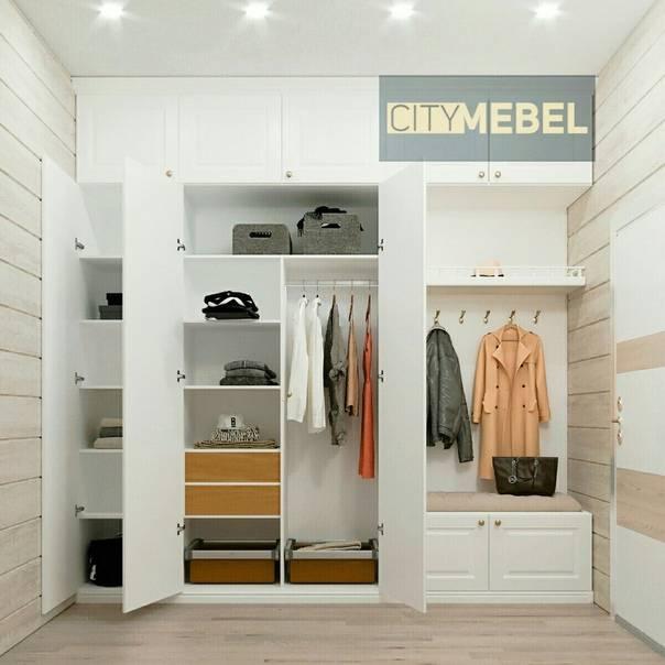 Наполнение шкафов в прихожей (45 фото): варианты внутреннего наполнения шкафов-купе с размерами в коридоре, организация двухдверного и другого шкафа внутри