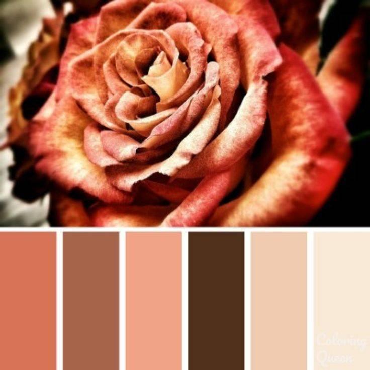 Что означает коричневый цвет в психологии?