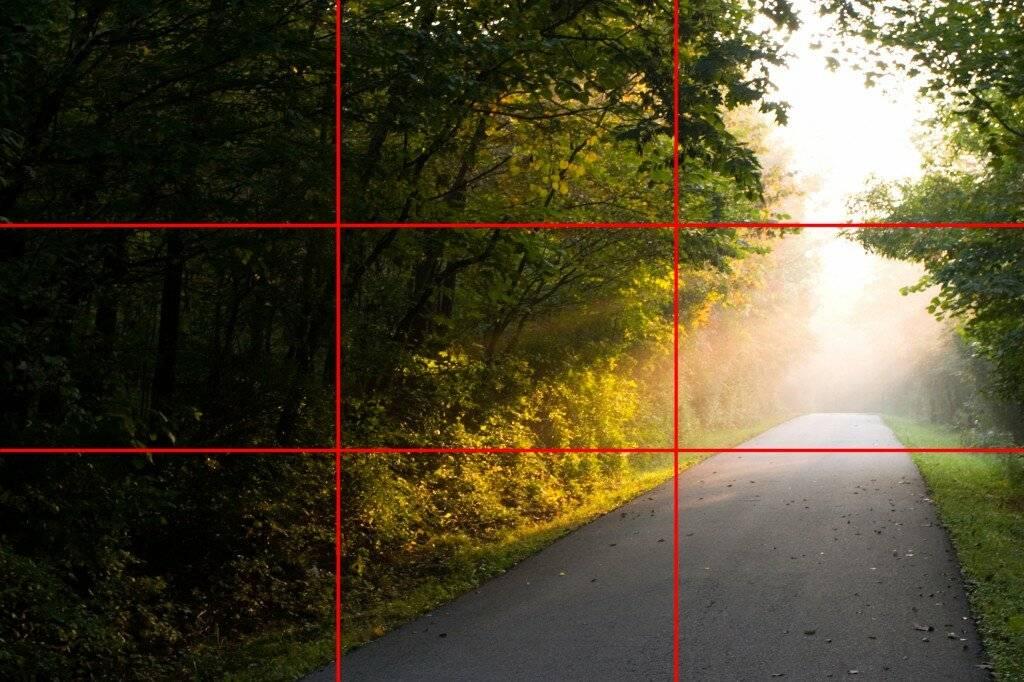 Что такое правило «золотое сечение» в фотографии