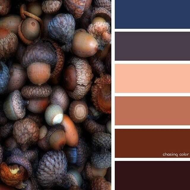 Коричневый цвет волос: фото оттенков (светло, темно, серо, черно, фиолетовый, с бликами, теплый, русо, красно, табачный, бурый, желто и тп), как подобрать, модные оттенки коричневого, палитра цветов к
