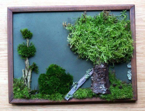Мох на стены: панно из декоративного мха в интерьере квартиры. как вырастить живой мох для озеленения стены? картины из стабилизированного мха
