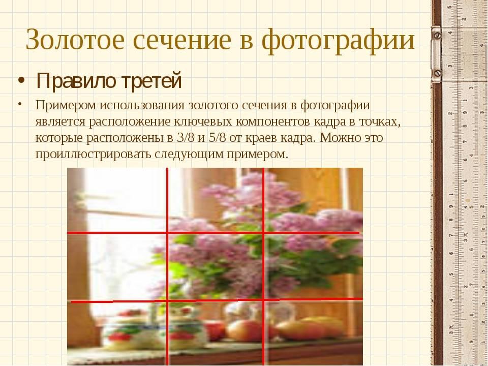 Правило золотого сечения в дизайне интерьера - определение и формула