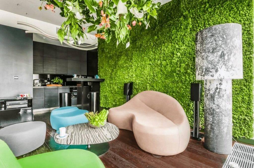Декоративный мох (58 фото): цветущий для декора, цветной и другие разновидности, мох в горшке для дома. как вырастить живой мох?