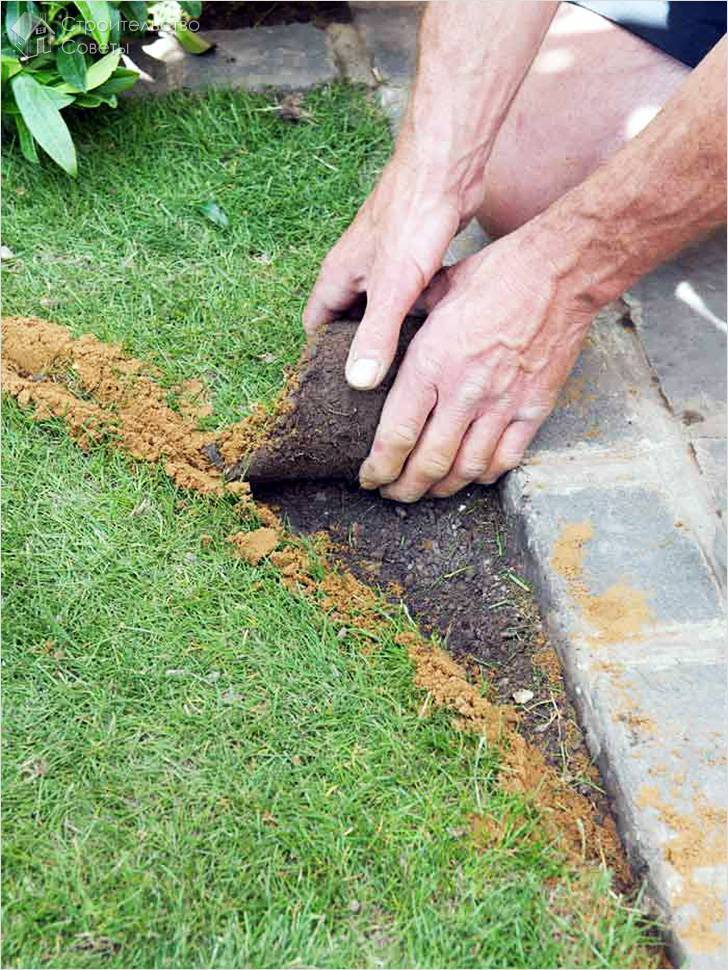 Как сеять газонную траву? 44 фото посадка семенами своими руками весной, как правильно вручную сажать газон на даче, пошаговая инструкция