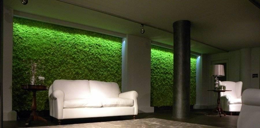 Декоративный мох: 75 фото разведения и применения в ландшафтном дизайне