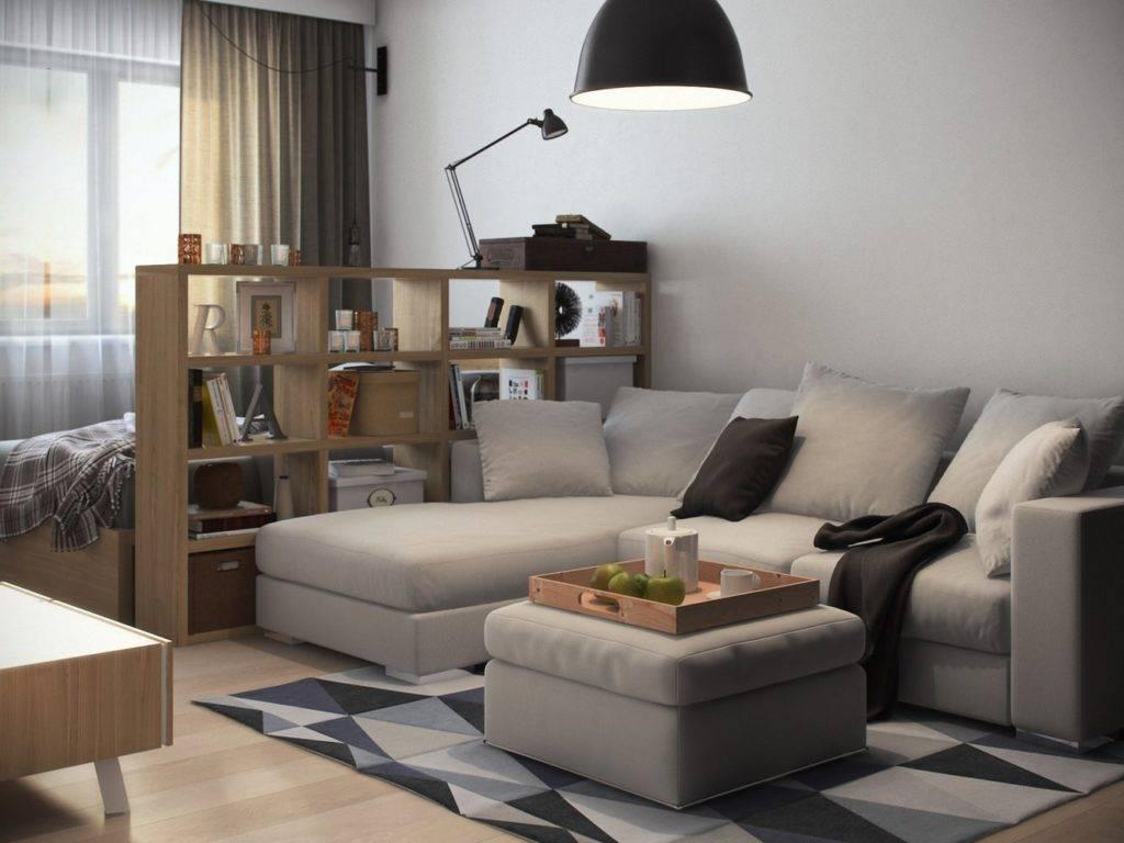 Гостиная со спальным местом: 165 фото идей дизайна с советами, как обустроить