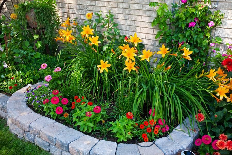Красивое оформление клумб и цветников