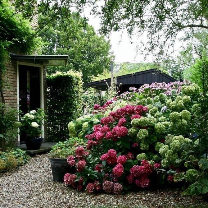 Ландшафтный дизайн дачного участка - 100 красивых идей для дачи и сада (фото)