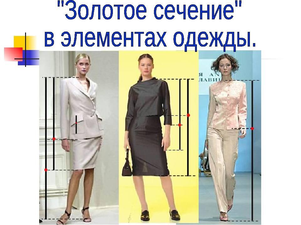 Определение гармоничной длины при помощи золотого сечения (часть 2) | красиво шить не запретишь!