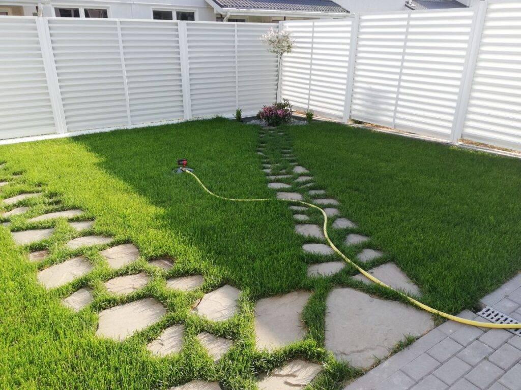 Как сеять газонную траву: что нужно и этапы посадки от подготовки до засева