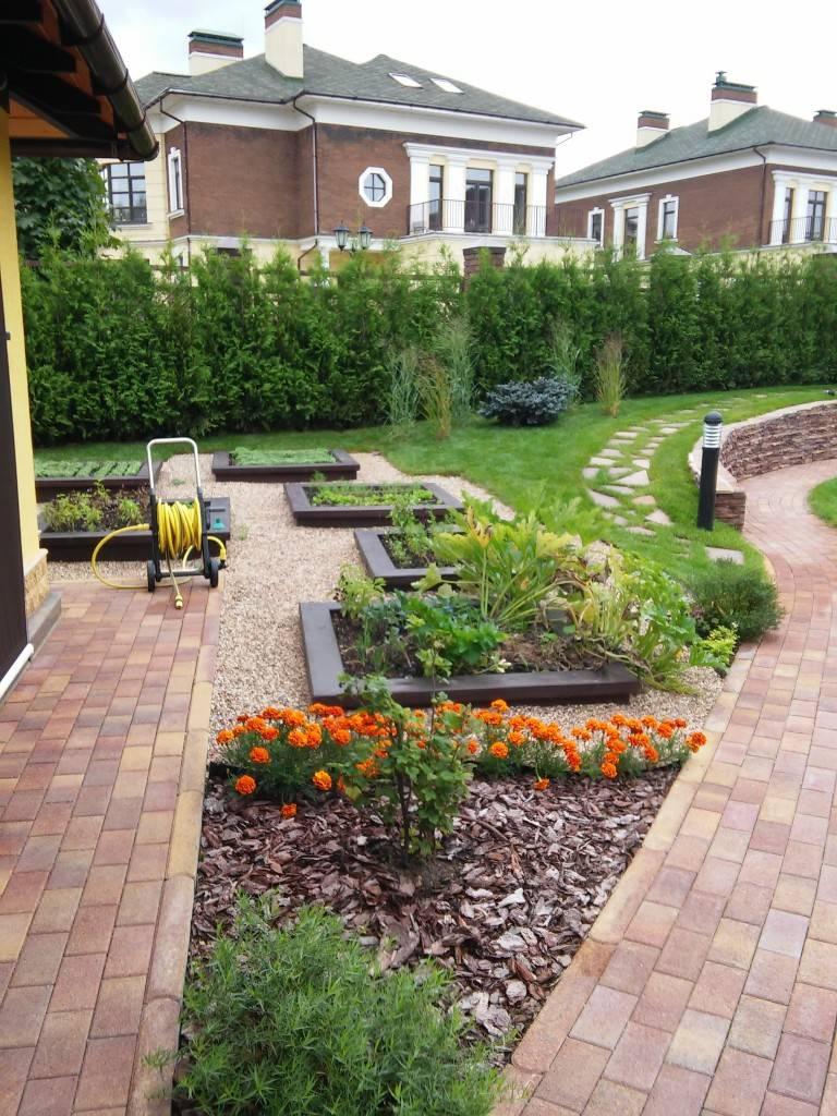 Озеленение дачного участка: фото и основные рекомендации по созданию живописного сада