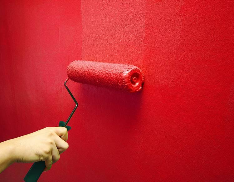 Покраска стен водоэмульсионной краской: подготовка и технология