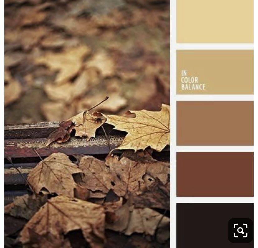 Темно-коричневые волосы (69 фото): как называются коричневые тона с холодным оттенком? название красивых глубоких цветов с вишневыми нотками