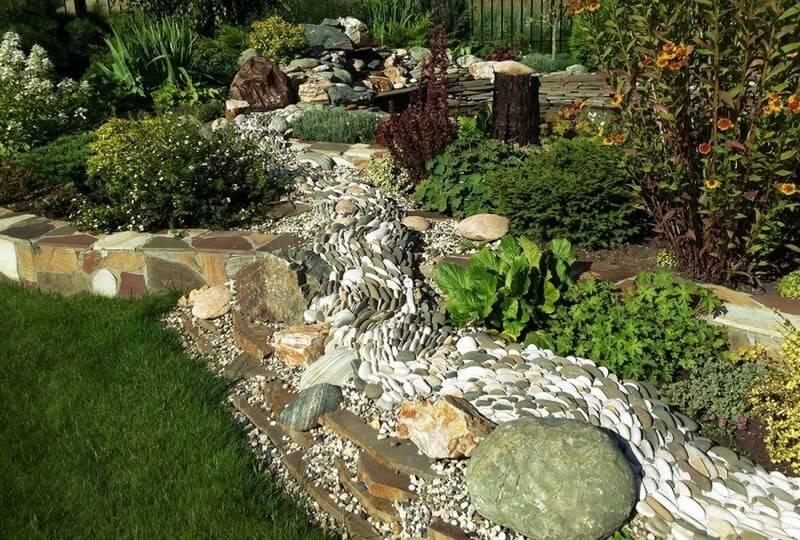 Ручей из цветов в саду: цветы и материалы для цветочного потока - 20 фото