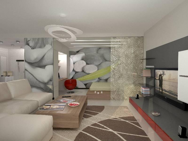 Зонирование гостиной и спальни: 145 фото идей и новинок планировки. примеры размещения мебели с советами по выбору цвета