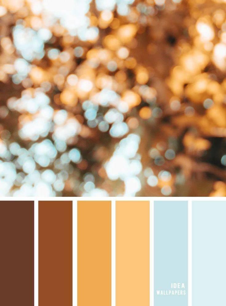 Популярные оттенки коричневого цвета волос, как выбрать свой