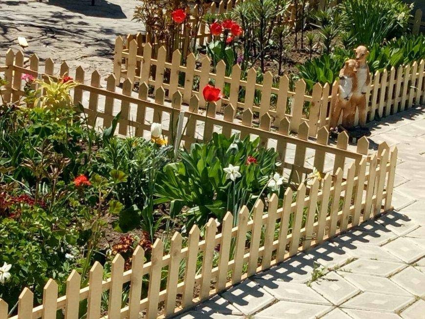 Живая изгородь на даче - 100 фото лучших идей по озеленению загородных домов