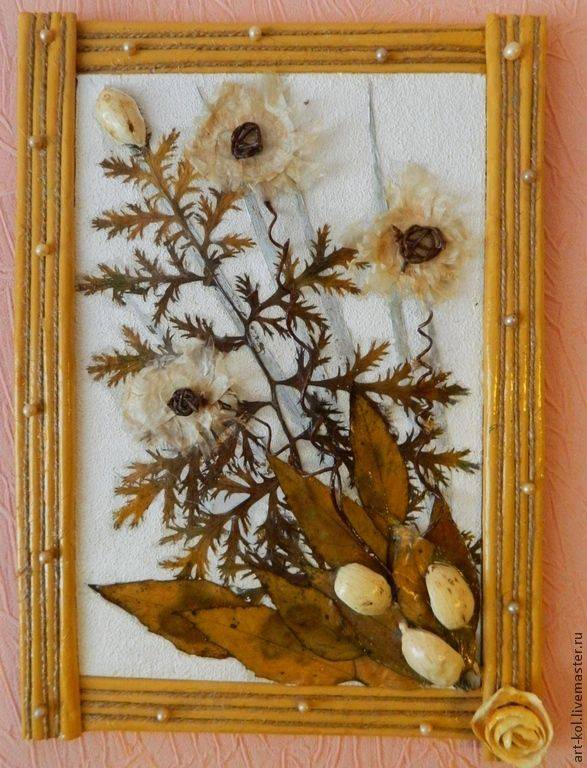 Делаем панно из сухоцветов: композиции своими руками — сделай сам, лайфхаки