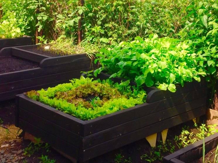 Пластиковые грядки: как сделать красивые садовые ограждения из обычной пластмассы ⋆ дачные дела