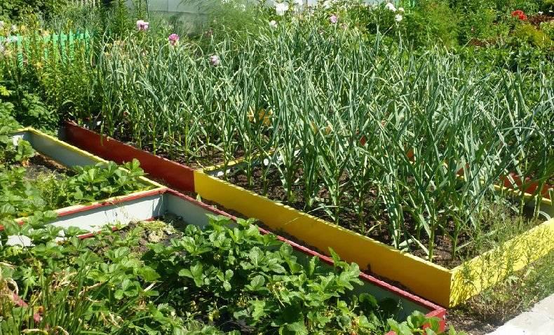 14 идей для обустройства высоких грядок, которые украсят огород