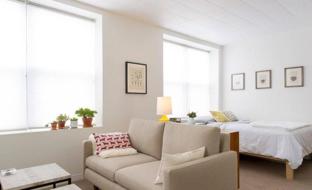 Гостиная со спальным местом: принципы идеального совмещения и размещения полноценного спального места в зале, 165 фото