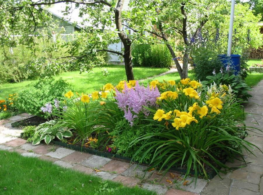 Лилии в ландшафтном дизайне, сорта и гибриды, их разнообразие и сочетание с другими растениями - 18 фото