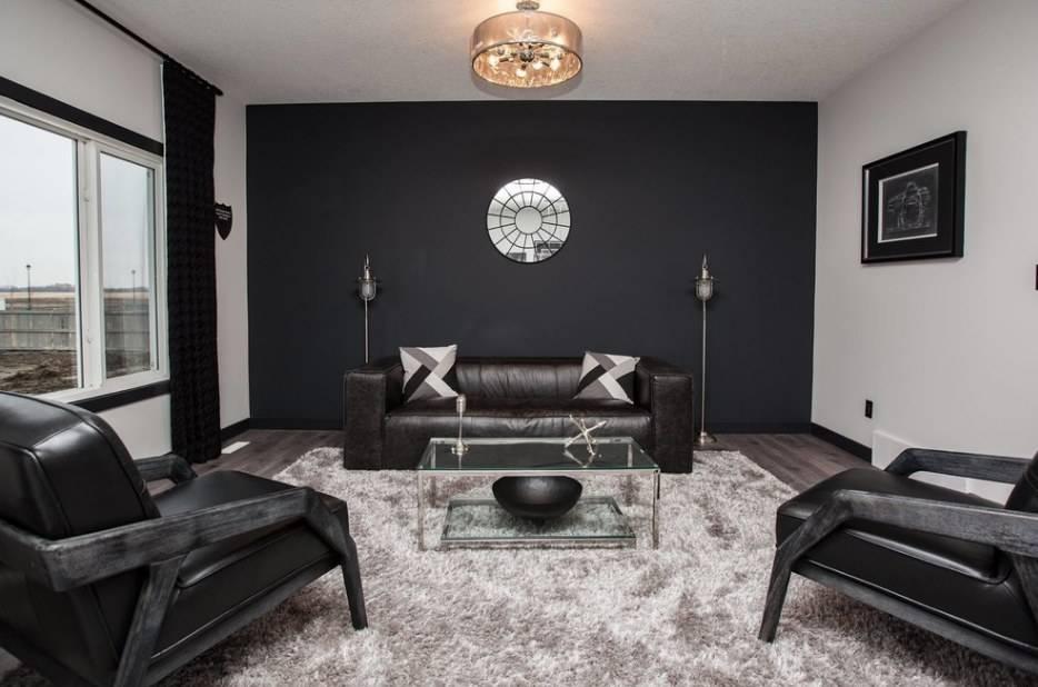 Темная мебель в интерьере: дизайн гостиной комнаты - 24 фото