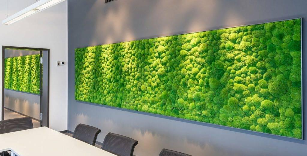 Стабилизированный мох в интерьере, своими руками, стена, картины, панно. как использовать стабилизированных мох в интерьере