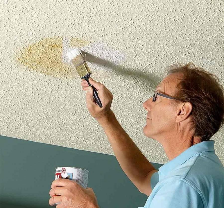Как покрасить потолок на кухне - 5 лучших способов и рекомендаций