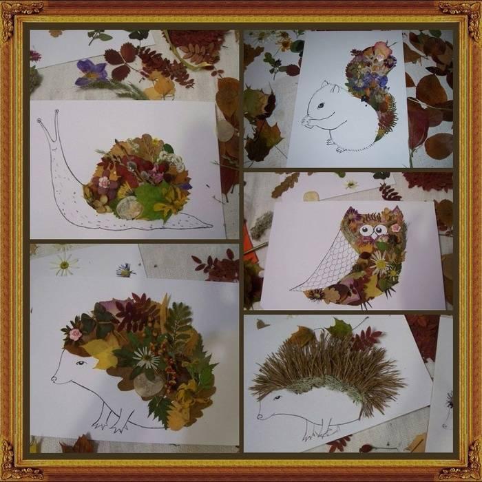 Делаем красивый гербарий своими руками: пошаговые инструкции