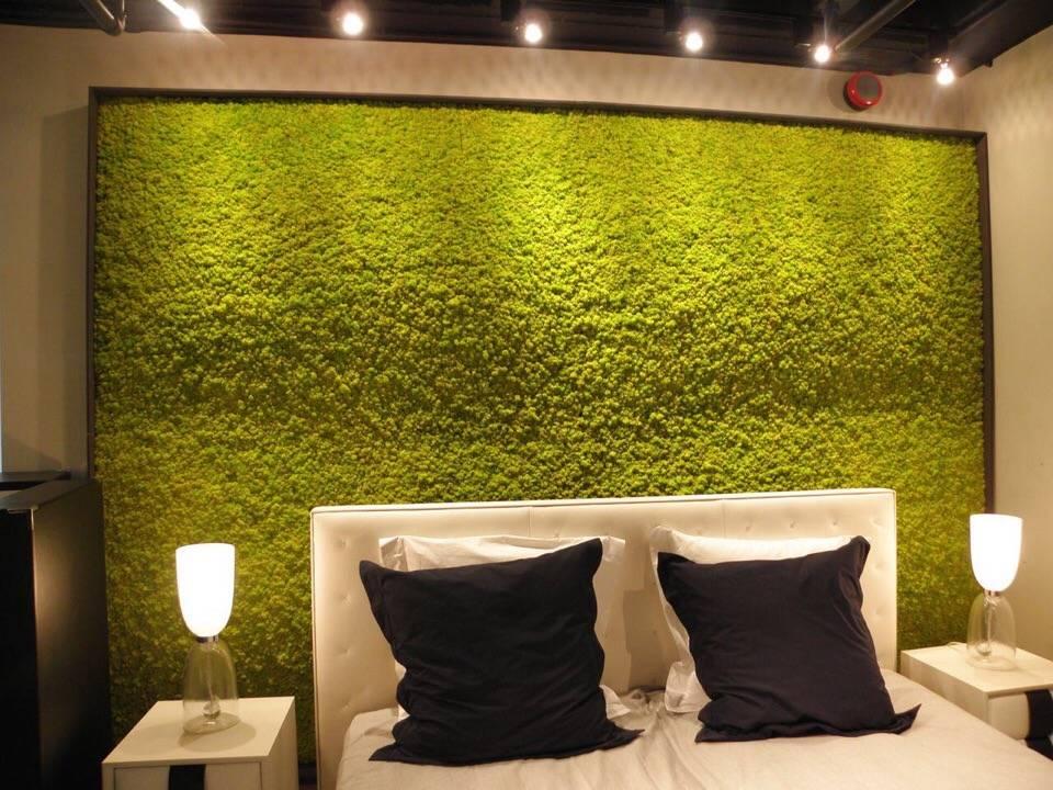 Искусственный мох: как выбрать мох на стену, для декора и для аквариума? декоративный мох в интерьере
