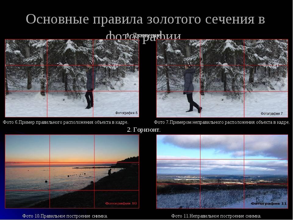 Правило третей в фотографии с примерами работ