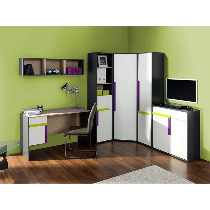 Шкаф для подростка мальчика — правила выбора, виды конструкций