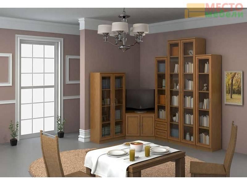 Стенки для зала — фото самых популярных новинок и моделей мебели с интересным дизайном