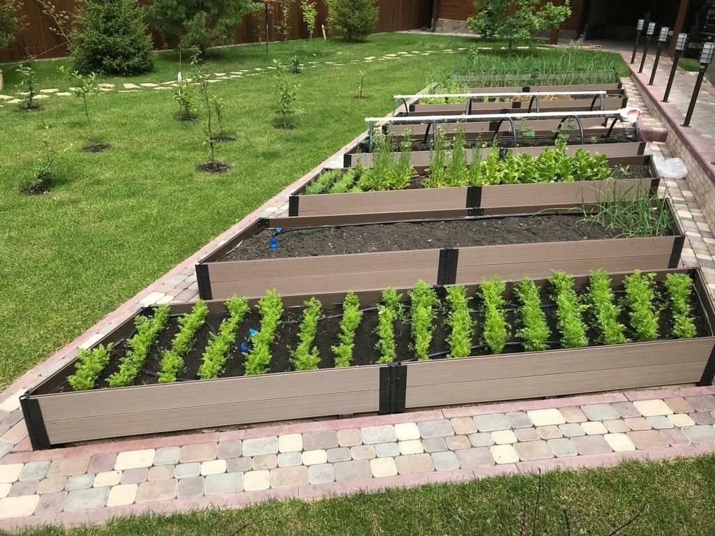 Все о пластиковых грядках (46 фото): бордюры и ограждения из пвх для дачи и огорода, выбираем садовую эколенту, сборные и разборные грядки