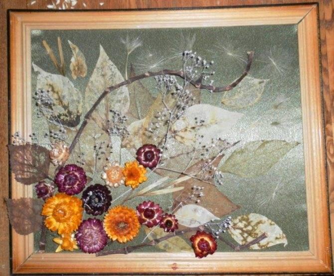 Поделки из сухоцветов | страна мастеров