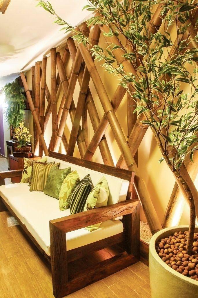 Комнатный бамбук: фото, феншуй, как быстро растет дома, как цветет, виды, как выглядит, как закрутить, приметы и суеверия, полезные свойства