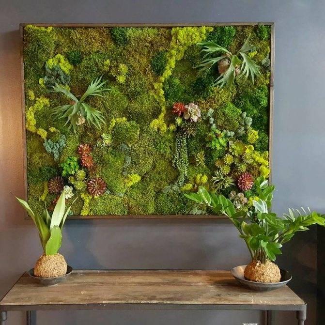 Поделки из мха (45 фото): на тему осени и зимние. как сделать их своими руками из листьев и мха в детский сад? как высушить мох и сохранить его зеленым для поделок?