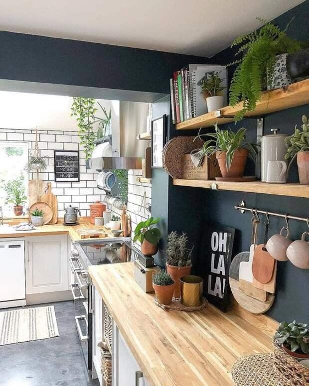Открытые полки на кухне — правила идеального сочетания и дизайна (75 фото)