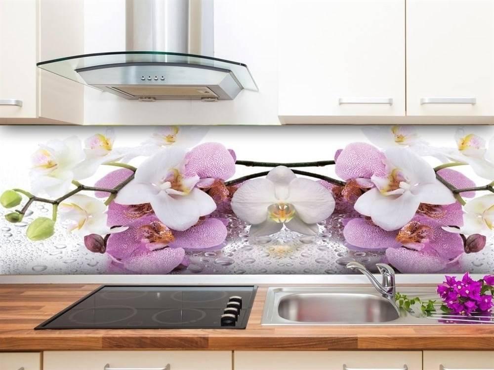 9 видов стеновых панелей для кухни – как выбрать?