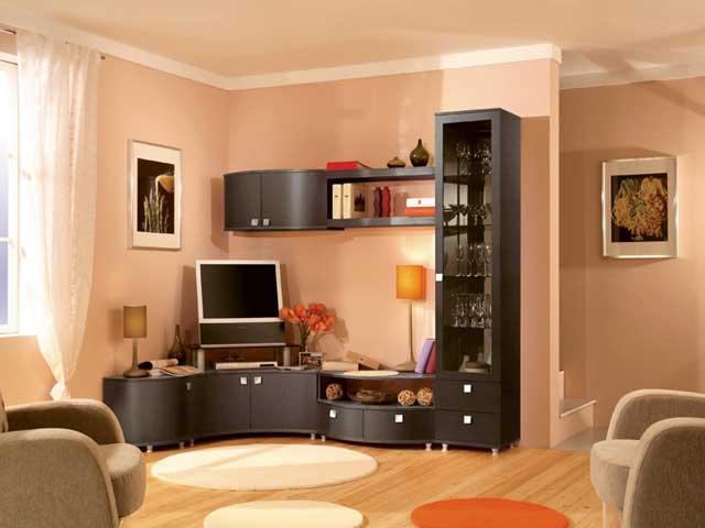 Современные стенки в зал своими руками: встроенная мебель для зальной комнаты, классические мини и модульные, маленькие и большие, как поставить гарнитур, варианты