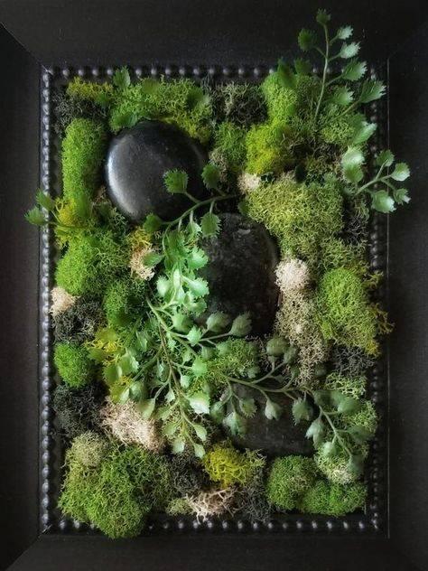 Стабилизированный мох: что это такое, где и как применяется и как сделать своими руками