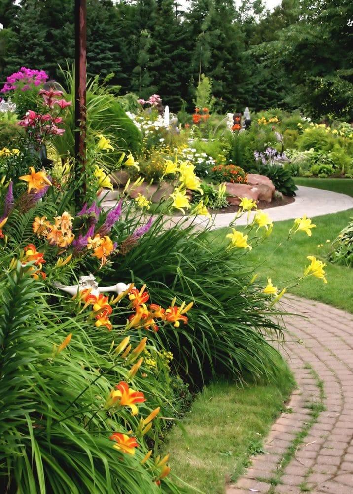 Многолетники для красивой клумбы - сочетания - сад и клумба
