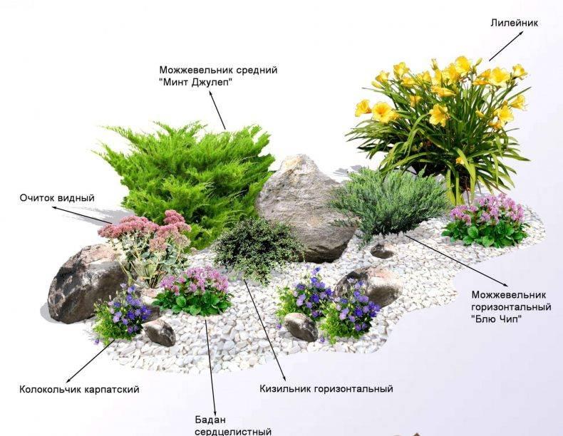 Как правильно сделать альпийскую горку на даче и в саду для цветов из камней, шин и подручных материалов с ручьем и кувшином: подбор красивых вариантов оформления  - 45 фото