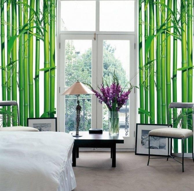 Бамбук для отделки стен: красота и функциональность